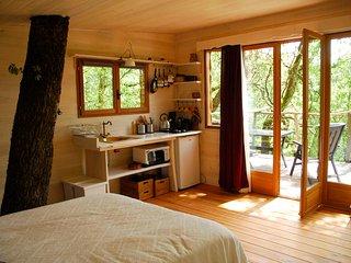 Cabane en forêt dans une nature calme et sereine. - Brassac vacation rentals