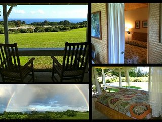 Bright Cottage with Television and Water Views - Hakalau vacation rentals