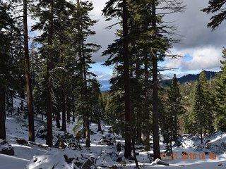 South Lake Tahoe Ski Condo / Lake Views / Close to Heavenly Lifts and - Stateline vacation rentals