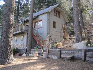 Treetop Hideaway Vintage Honeymoon Charmer Nearby Skiing at Snow Valley - Green Valley Lake vacation rentals