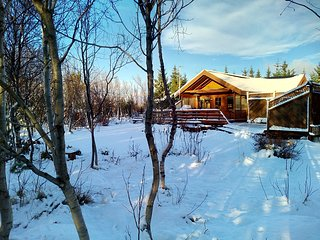 Golden Circle cabin with Jacuzzi and WiFii -  Northern lights - Arborg vacation rentals