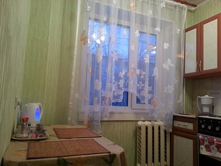 1 bedroom Apartment with Internet Access in Nizhnevartovsk - Nizhnevartovsk vacation rentals