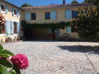 Beautiful renovated Pyrenean cottage - Saint-Laurent-de-Neste vacation rentals