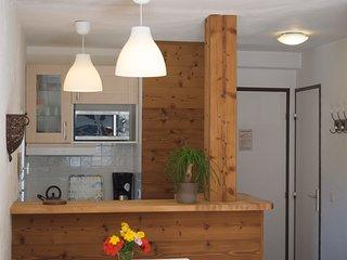 Appartement rénové avec balcon face à la Chaîne du Mont Blanc - Chamonix vacation rentals