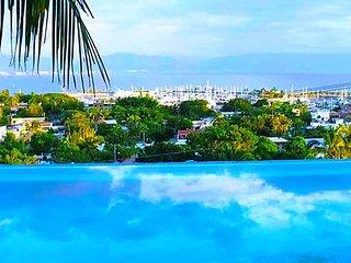 2 Bedroom Magnificent Ocean View - La Cruz de Huanacaxtle vacation rentals