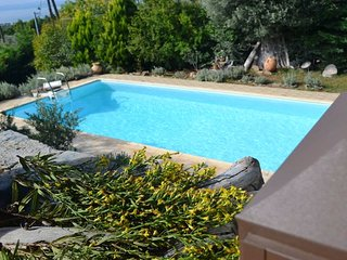 EviaFoxHouse with private pool near forest & sea view in Evia Island Greece - Politika vacation rentals