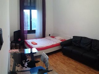 4 bedrooms danube view central flat - Budapest vacation rentals