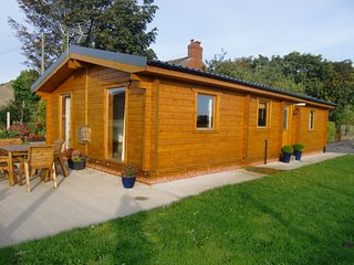 Nice Chalet with Television and DVD Player - Pilling vacation rentals