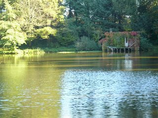 Eco friendly lakeside holiday cabin in the heart of rural France on private lake - Saint-Priest-les-Fougeres vacation rentals