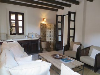 Nice House with Hot Tub and Television - San Miguel de Allende vacation rentals