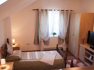 1 bedroom Condo with Washing Machine in Tirgu Mures - Tirgu Mures vacation rentals