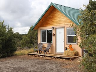 1 Bedroom Forest Cabin w/ loft,full kitchen, and bath! - Monticello vacation rentals