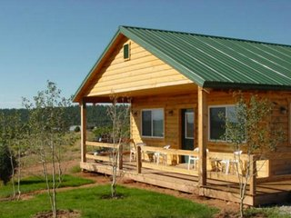 3 Bedroom Mountain Cabin w/ stunning views! Sleeps 6. - La Sal vacation rentals