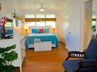 1 bedroom Condo with Internet Access in Kaneohe - Kaneohe vacation rentals