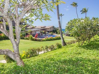 Beautiful Kahana House rental with A/C - Kahana vacation rentals