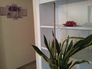 1 bedroom Townhouse with A/C in Santeramo in Colle - Santeramo in Colle vacation rentals