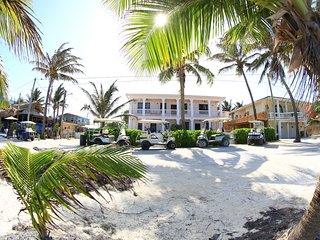 Beautiful Villa with Internet Access and A/C - San Pedro vacation rentals