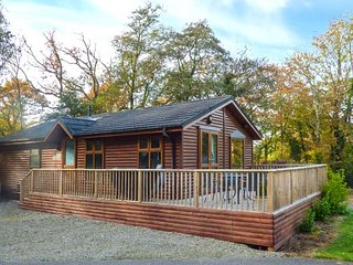THE WILLOWS, detached log cabin, hot tub, WiFi, Narberth, Ref 948719 - Narberth vacation rentals