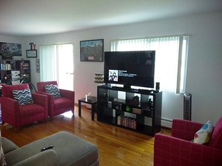 Large 2 BR 1 BR Apartment 20 mins from DT Chicago - Des Plaines vacation rentals