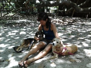 Nature & dog-lovers experience in Bahia, Brazil - Suite Curió - Arembepe vacation rentals