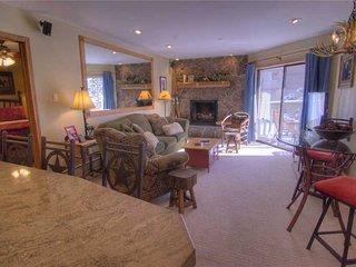 Westwind 202 2BD 2BA condo - Vail vacation rentals