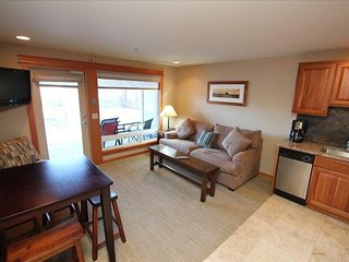 Romantic Condo with Internet Access and A/C - Chelan vacation rentals