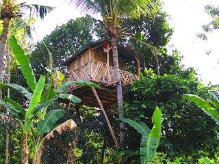 Rumah Pohon - Nusa Penida vacation rentals