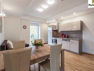 Park Villa apartments Bad Kissingen - Bad Kissingen vacation rentals