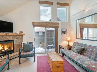 Cozy 2 bedroom Telluride Apartment with Internet Access - Telluride vacation rentals