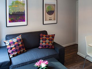 Modern apartment in heart of the city - Dublin vacation rentals
