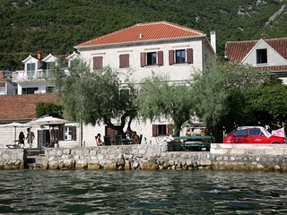 Waterfront apartment with stone beach and garden 4ppl - Kotor vacation rentals