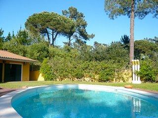 Apple Beach Villa - Colares vacation rentals