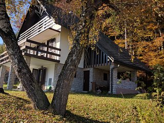 Nice private house is located 100 m from the ski lift Stari Vrh in Skofje Loka - Skofja Loka vacation rentals