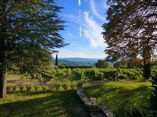 Mas en pierre dans le Luberon entre vignes, oliviers et lavandes avec piscine - Roussillon vacation rentals