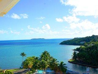 Oceanview Luxury Unit by the Beach, Free Parking, Wifi, Dishwasher, Washer/Dryer - Fajardo vacation rentals