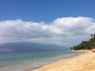 Waiohuli Beach Hale #A-203 Oceanfront Ocean View 2 Bd 2 Bath  Great Rates!! - Kihei vacation rentals