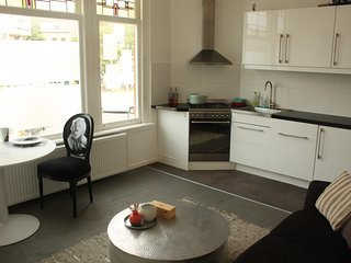 Charming appartment perfectly located, everything brand new - The Hague vacation rentals