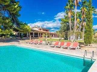 PI DES SIBIU - Villa for 12 people in ESTABLIMENTS - Esporles vacation rentals