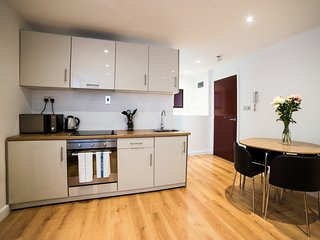 One bedroom apartments at Keswick House - Leicester vacation rentals