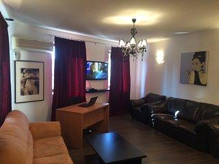 Bucharest Center Villa with 6 rooms - Bucharest vacation rentals