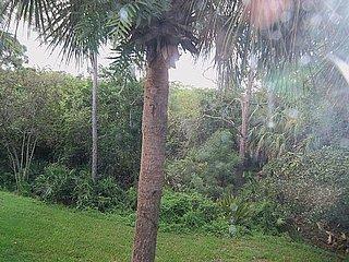 Bonita Bay-Harbor Landing NE202 - Bonita Springs vacation rentals