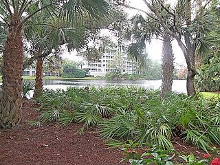 Wild Pines - Bonita Bay E-105 - Bonita Springs vacation rentals