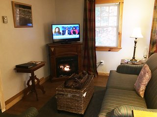 Grams cottage. 2 bedroom mountain views - Thornton vacation rentals