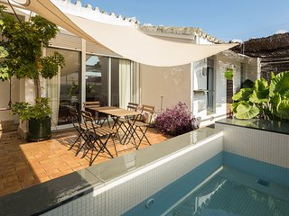 Santa Marina Terrace. 4 bedrooms, private terrace with plunge pool, parking - Seville vacation rentals