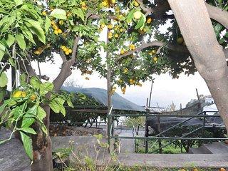 Bilocale a Amalfi per 2 persone ID 553 - Amalfi vacation rentals