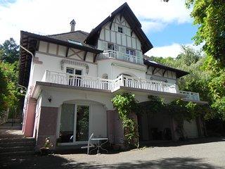 VILLA PERVENCHES Chambres d'hotes - Thann vacation rentals
