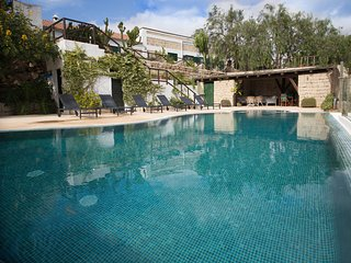BARRICA La Malvasia Rural Accomodation - Arico vacation rentals