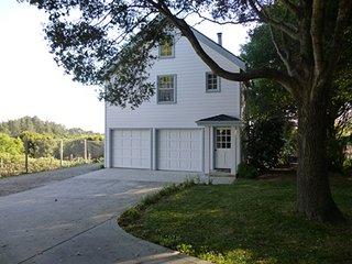 Guest House on Vineyard over looking Monterey Bay - Aptos vacation rentals
