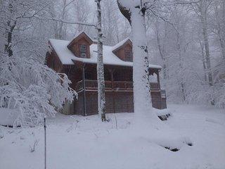 The Bear Dance Cabin at Wintergreen - Wintergreen vacation rentals