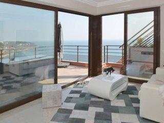 Stunning view near Monaco - 1 bedroom - Roquebrune-Cap-Martin vacation rentals